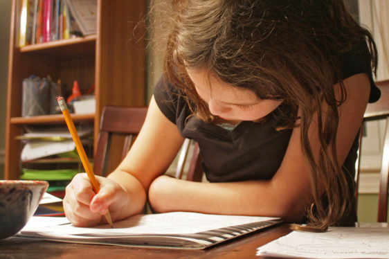 Know everything about 11 plus exam papers